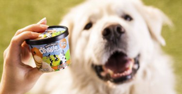 Ben & Jerry's Releases New Flavors Made Especially for Dogs